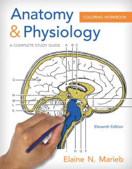 anatomy and physiology coloring workbook a complete study guide pdf