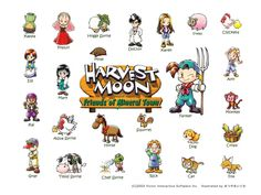 harvest moon back to nature guide to marriage