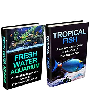 tropical fish tank setup guide