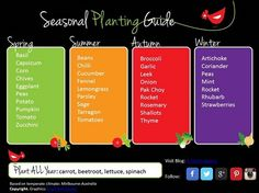 autumn vegetable planting guide melbourne