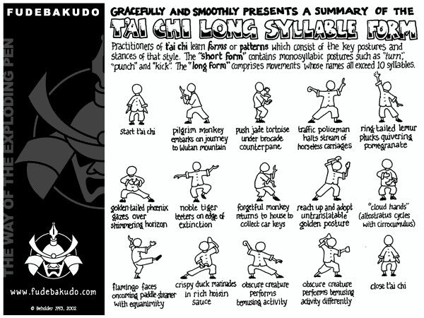a beginners guide to short form tai chi