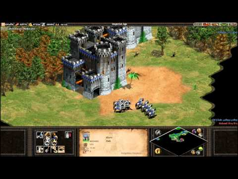 age of empires ii strategy guide
